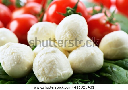 mozzarella cheese balls, ripe cherry tomatoes and greens close-up on the white background. horizontal format - stock photo