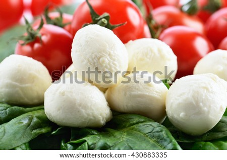 mozzarella cheese balls, ripe cherry tomatoes and greens on the full background. horizontal format - stock photo