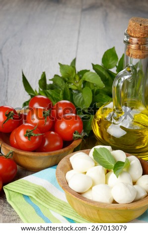 Mozzarella cheese, cherry tomatoes, basil leaves and olive oil - caprese salad ingredients - stock photo