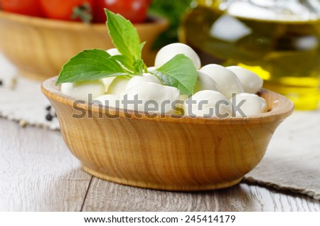 Mozzarella cheese, cherry tomatoes, basil leaves and olive oil - for caprese salad - stock photo