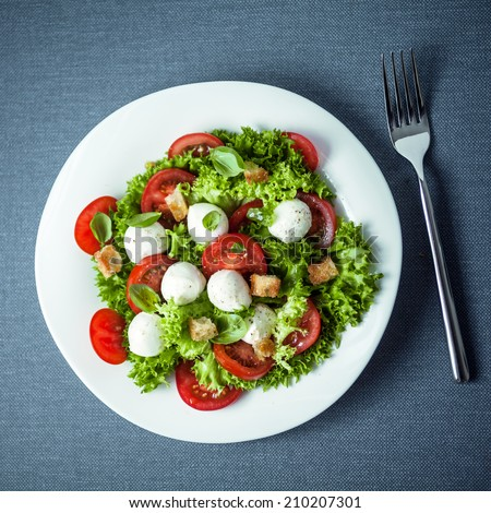 Mozzarella salad with crunchy fried croutons, tomato and frilly lettuce garnished with fresh basil leaves, overhead view - stock photo
