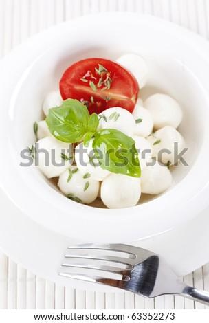 mozzarella with fresh basil and tomatoes - stock photo