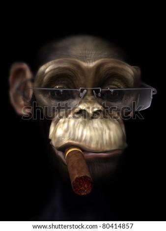 Mr Chimp the Pimp - stock photo