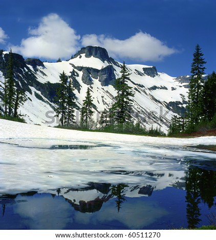 Mt Baker National Park, USA - stock photo