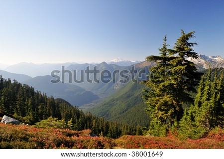 Mt. Baker Viewed from Hidden Lake trail - stock photo