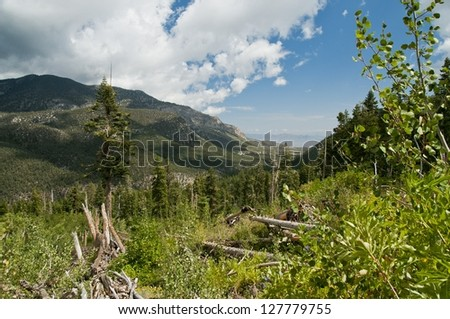 Mt charleston avalanche path in the summer looking to the desert in the valley below - stock photo