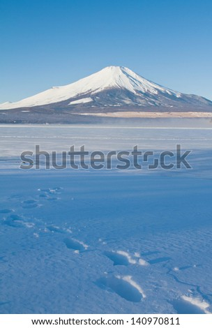 Mt.Fuji at lake Yamanashi - stock photo