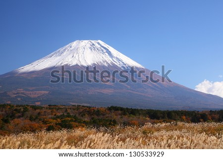 Mt. Fuji with Japanese silver grass in autumn, Japan - stock photo