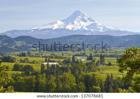 Mt. Hood and Hood River valley in Spring Oregon. - stock photo