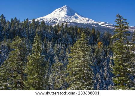 Mt. Hood, Oregon - stock photo