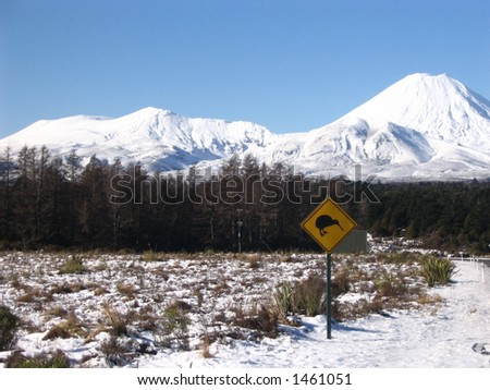 Mt Ngaruhoe and Tongariro on the Left. - stock photo