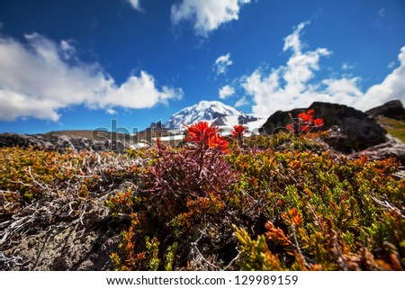 Mt.Rainier - stock photo