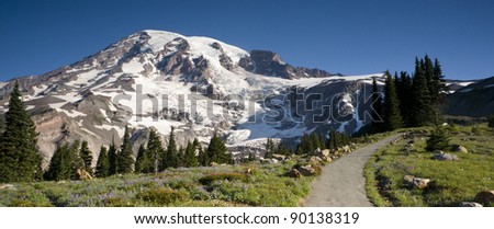 Mt. Rainier Tallest Mountain and Wildflowers in Bloom - stock photo