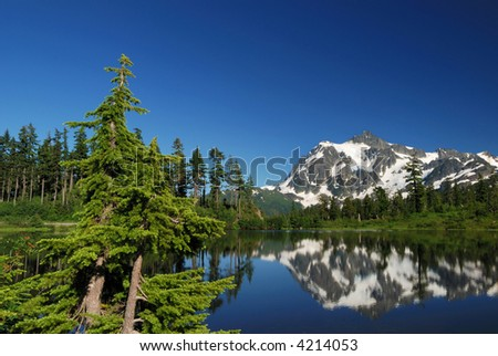 mt. shuksan and reflection on picture lake - stock photo