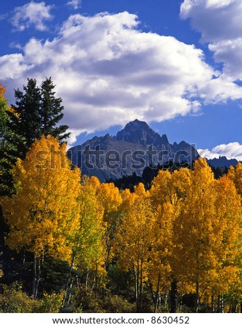 Mt. Sneffels and aspen trees in the Uncompahgre National Forest of Colorado, photographed during the autumn season. - stock photo