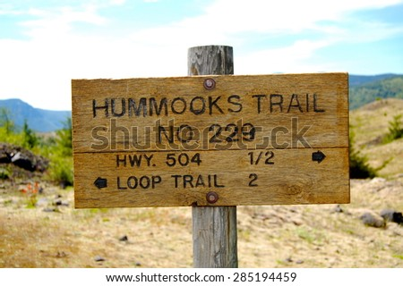 Mt. St. Helens Hummocks Trail