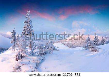 Mt. Synysk in the morning mist. Colorful winter sunrise in the Carpathian mountains.