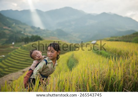 Mu cang chai, VIETNAM September 27 2014 :Children working in rice terrace on 27 /09/2014 in Sapa,Vietnam.  Many children in Vietnam are withdrawn from school to be bread-winners for their families