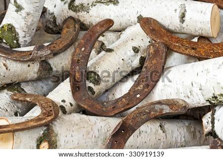 much horseshoe on birch - stock photo