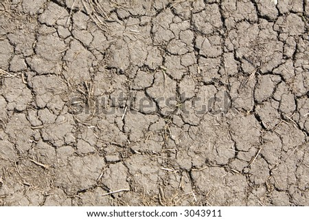 mud background