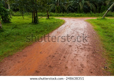 Mud Road after rain in Thailand - stock photo