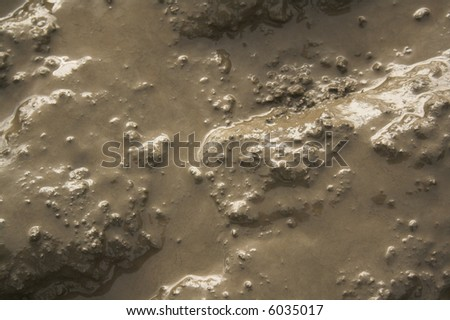 Mud texture - stock photo