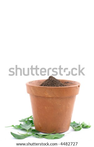 Mud vase with earth without a Plant and leaves