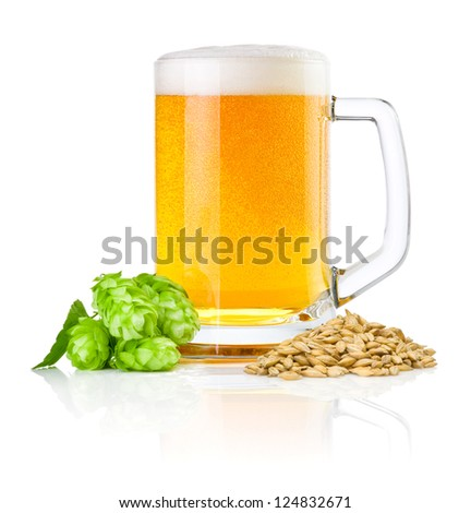 Mug fresh beer with Green hops and wheat isolated on a white background - stock photo