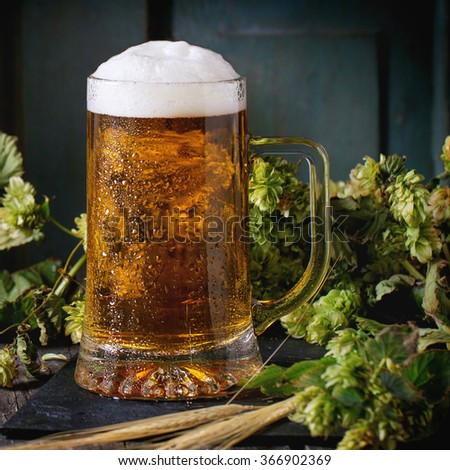 Mug of fresh draught lager beer with foam on black slate, served on old wooden table with green hop and ears of barley. Dark rustic style. Square image with selective focus - stock photo