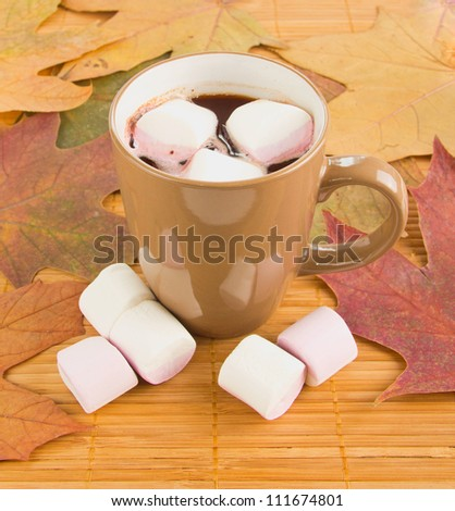 Mug of hot chocolate with marshmallows against a background of autumn leaves - stock photo