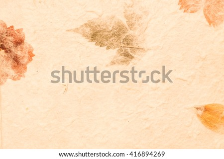 Mulberry paper with dry flower and leaf texture background in vintage tone - stock photo
