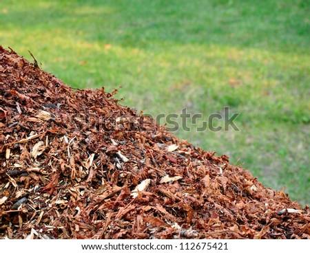 Mulch on grass, nature biomass. - stock photo