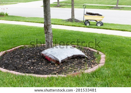 Mulching around the trunk of a tree in a neat circular flowerbed with a pocket of commercial organic mulch from a nursery at the start of spring in a yard work concept - stock photo