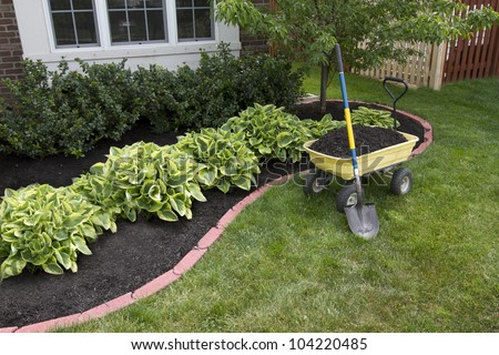 Mulching bed around the house and bushes, wheelbarrow along with a shovel. - stock photo