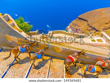 Mules waiting for passengers on the step road from Fira to old port in Santorini island in Greece - stock photo