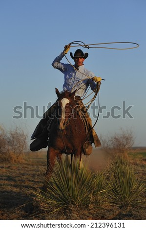 Muleshoe, Texas, USA, - March. 28. 2012: Cowboy chasing cow with rope in dust - stock photo