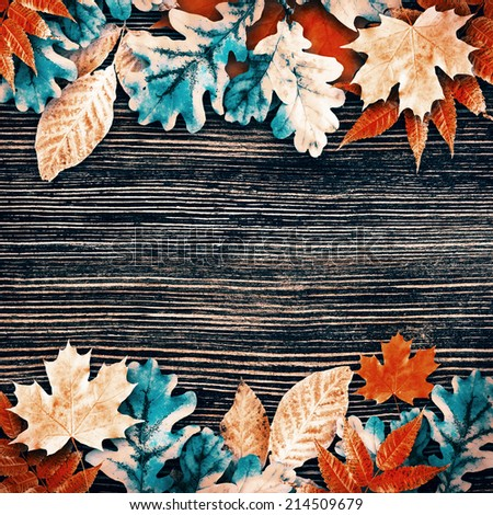 Multi-colored autumn leaves with highlights, natural background - stock photo