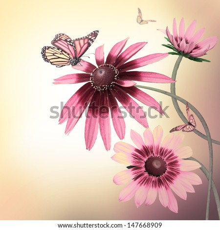 Multi-colored gerbera daisies and a butterfly on a white background - stock photo