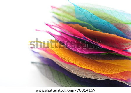 Multi-colored leaves on each other - stock photo