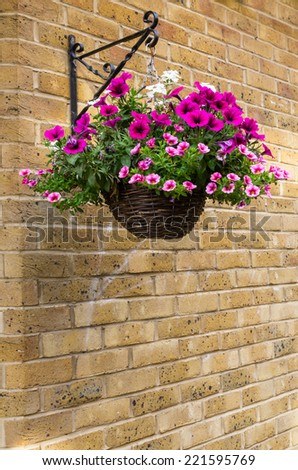 Multi-colored spring flowers hanging in a basket - stock photo