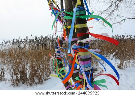 Multi-colored tapes on a tree in the winter  - stock photo