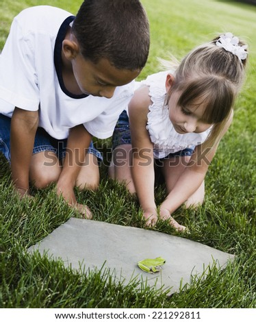 Multi-ethnic children looking at frog - stock photo