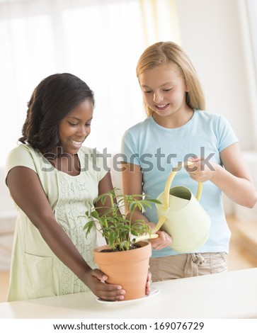 Multi-ethnic friends watering potted plant at home - stock photo