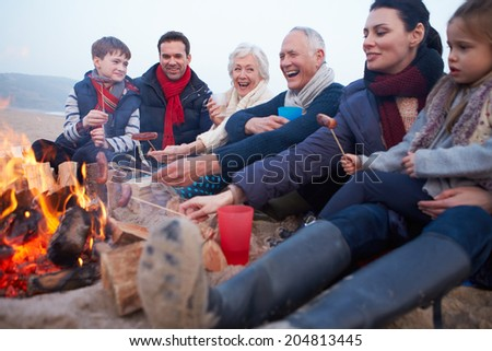 Multi Generation Family Having Barbecue On Winter Beach - stock photo