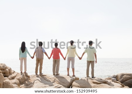 Multi-generational family holding hands on rocks by the sea, rear view - stock photo