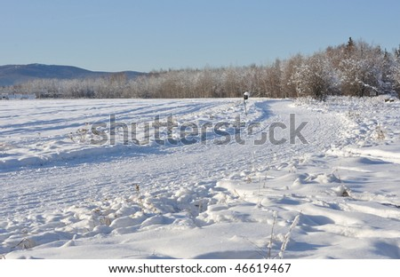 Multi-use Trail through Boreal Forest during winter in Alaska - stock photo
