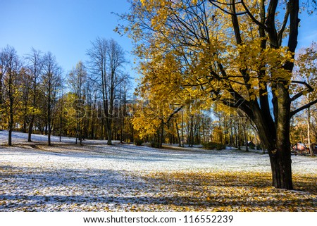 Multicolored Autumn landscape with golden leaves in the Latvian countryside - stock photo