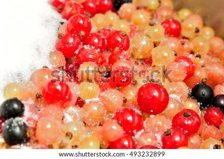 Multicolored currants sprinkled with sugar.