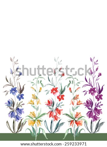 Multicolored small flowers of the field - stock photo