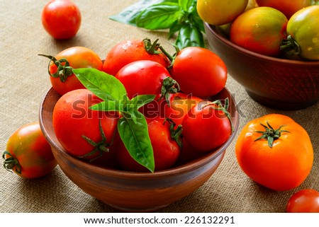 multicolored tomatoes on fabric background - stock photo